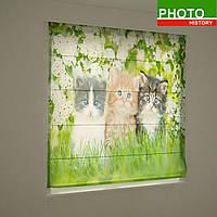 Римские фотошторы животные три котика в цветах