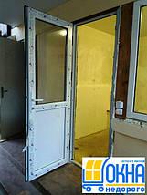 Металлопластиковые двери Вышгород, фото 2