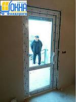 Металлопластиковые двери Борисполь, фото 1
