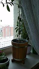 Кадка для цветов дубовая 7 л. с металической вставкой , фото 2
