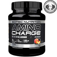 Аминокислоты Scitec Nutrition Amino Charge 570 gr