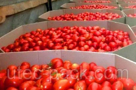 Октабины для овощей различных размеров от производителя