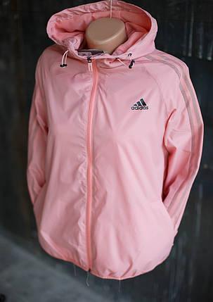 Ветровка женская Adidas.Розовая,плащевка, фото 2