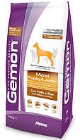 Gemon Maxi Puppy & Junior корм для щенков крупных пород, 15 кг