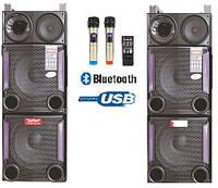 Активная акустика E248 с радиомикрофонами (600W/USB/FM/Bluetooth)), фото 1