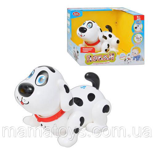 Собака 7110 Лакки, интерактивная, звук (рус), реагирует на прикосновения