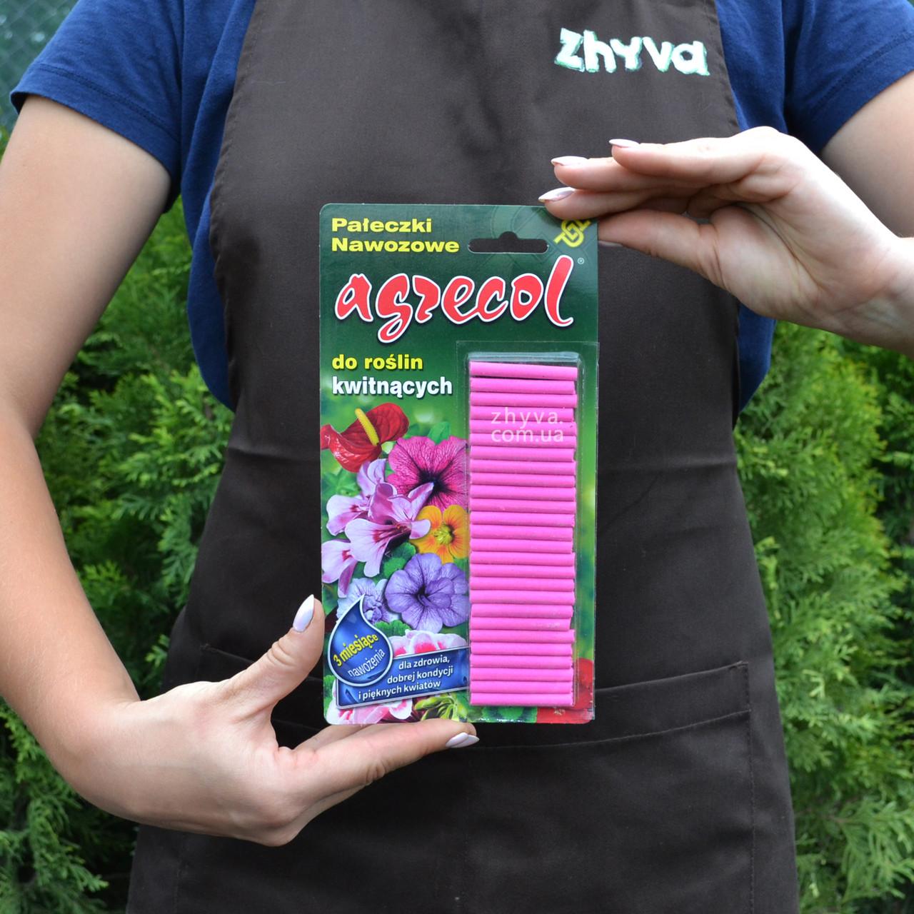 Добриво в паличках Agrecol для квіткових рослин 32г