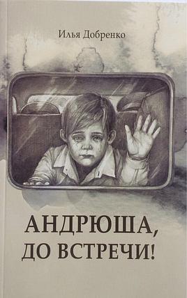 Андрюша, до встречи! Илья Добренко, фото 2