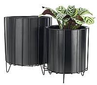 Два напольных черных горшков для растений на ножках