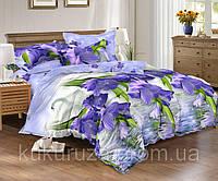 Двуспальный комплект постельного белья 180*220 из ранфорса Лебединое озеро