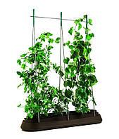 Грядка для растений G-Row, коричневая, фото 1