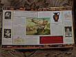 Мифология Боги герои и чудовища Древней Греции , фото 6