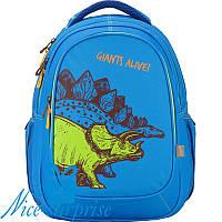 Школьный рюкзак с ортопедической спинкой Kite Junior K17-8001M-3, фото 1