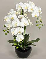 Декоративная композиция орхидея (фаленопсис) в керамическом горшке, К-186