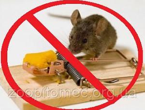 Средства от крыс мышей тараканов