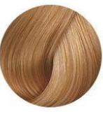 Безаммиачная краска для волос Wella Color Touch Plus - 88/03 Натуральный золотистый светлый блондин