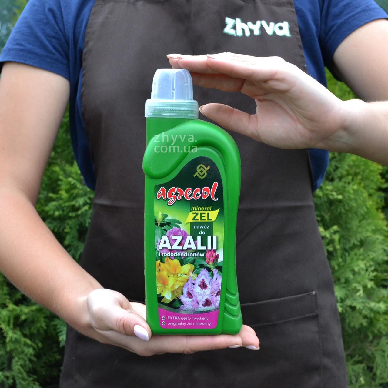 Добриво-гель Agrecol для азалій та рододендронів 0.5 л