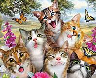 Картина для рисования по номерам, веселые котики 50х40 см