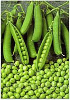 Горох овочевий Альфа  1 кг