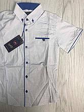 Рубашка с коротким рукавом  для мальчиков на 7-12 лет