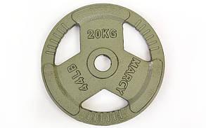 Блины стальные с хватом 20кг (диам. 52мм) TA-8026-20