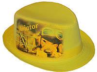 Шляпа детская челентанка фотопринт авиатор