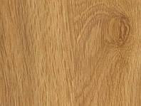 Ламинат Golden Oak дуб золотой 32 класс 8мм