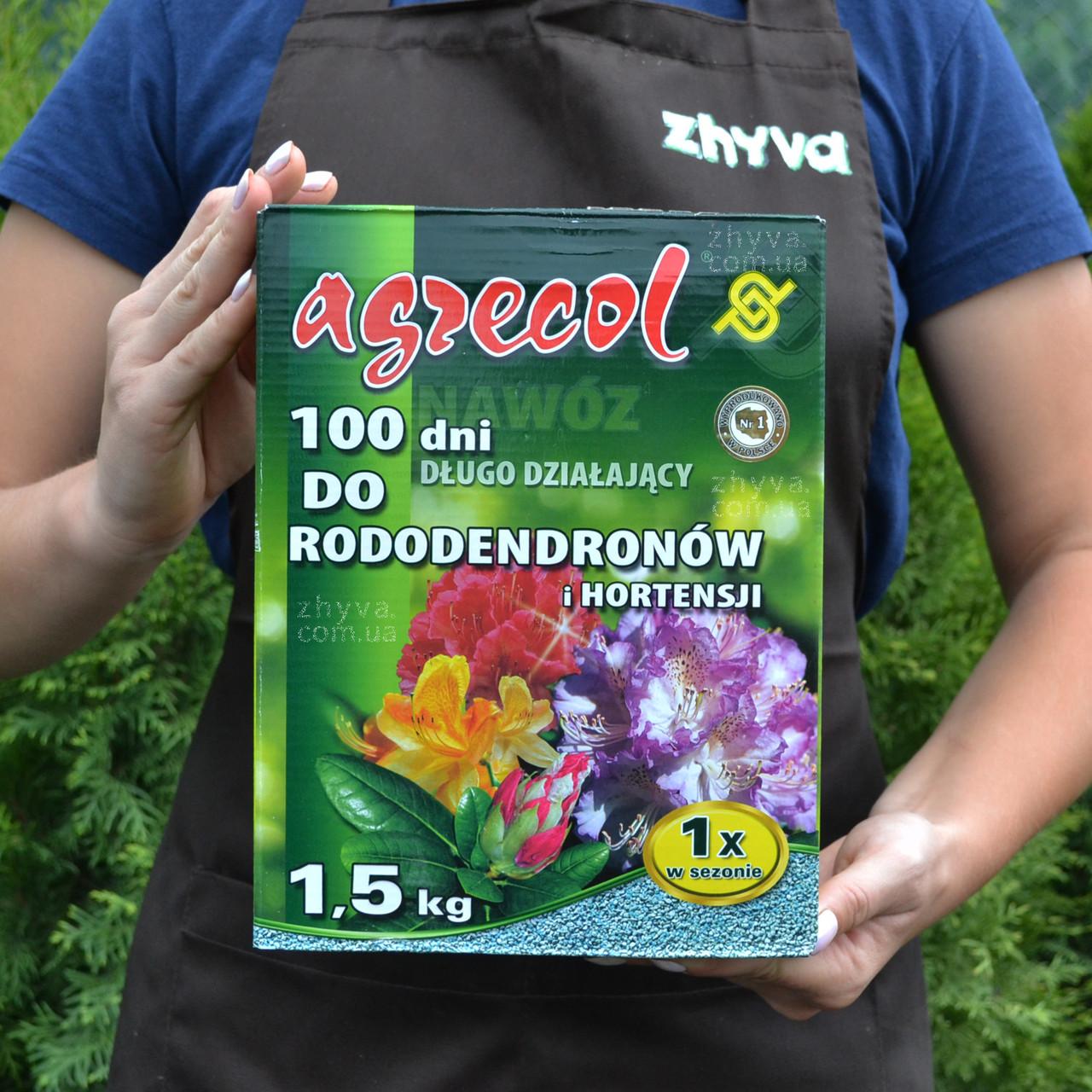 Добриво Agrecol 100 днів для рододендронів та гортензій 1.5кг