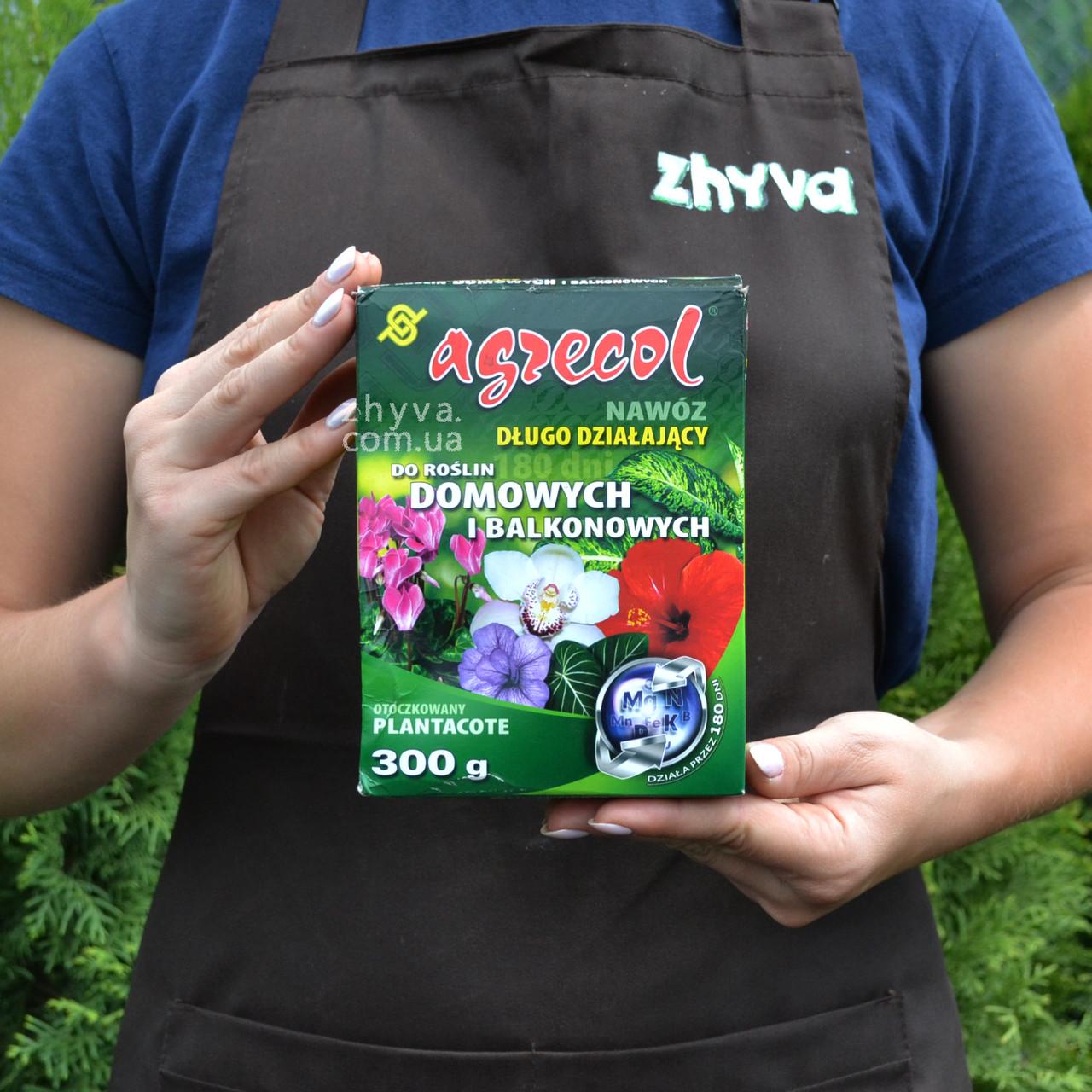 Удобрение длительного действия Agrecol для комнатных растений Plantacote 300г