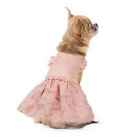 Платье для собак Pet Fashion Азалия XS, Длина спины 23-26 см, обхват груди 28-32 см