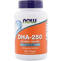 DHA-250 (концентрат омега 3) 120 капс зрение память IQ  Now Foods USA