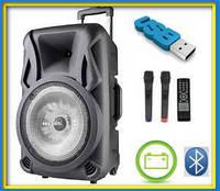 Аккумуляторная акустика USBFM 1010BT, фото 1
