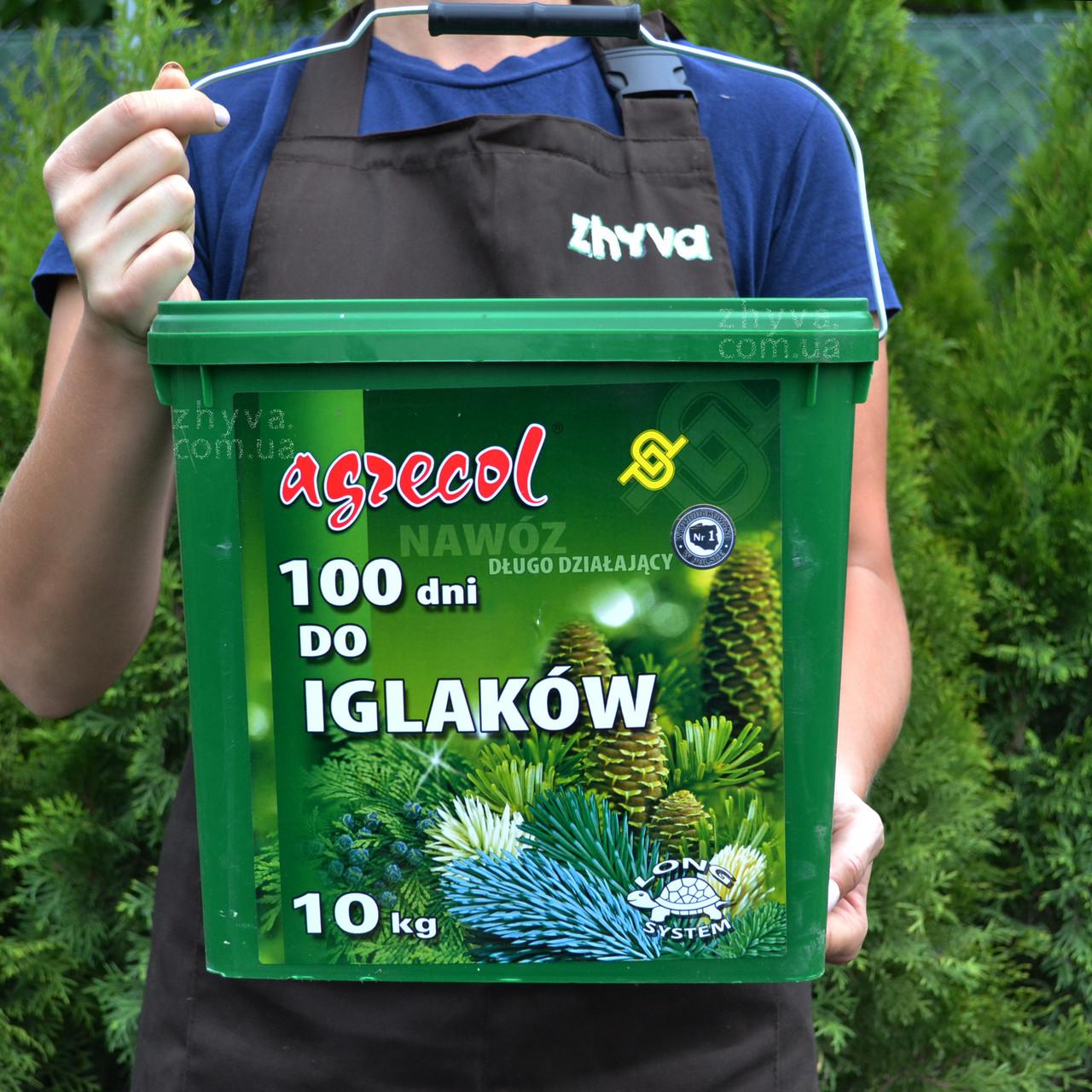 Добриво Agrecol 100 днів для хвойних рослин тривалої дії 10кг