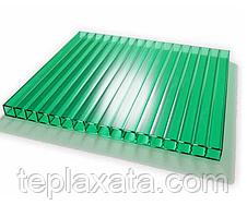 Стільниковий полікарбонат VIZOR 6 мм (прозорий)