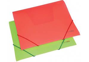 Папка пластиковая B5 на резинках ECONOmix ассорти