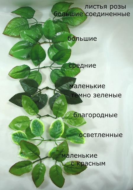 Искусственные зеленые листья, лианы,ветки деревьев,осенние ветки.