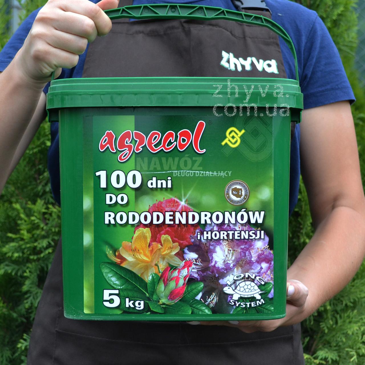 Добриво Agrecol 100 днів для рододендронів та гортензій 5кг