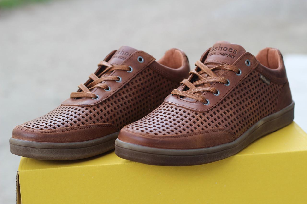 Кожаные мужские туфли C.Shoes перфорация,коричневые