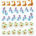 Водные Наклейки для Ногтей Разноцветные, Декор ногтей, Маникюр, Angevi S 043 Ромашки, Бабочки, Гирлянды, фото 4