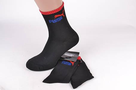 2b5ea51b72dd Мужские носки