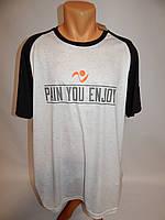 Мужская спортивная футболка р.52 103Ф , фото 1