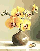 Картины по номерам орхидеи в вазе (AS0019) 40 х 50 см ArtStory