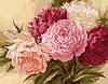 Картина-раскраска Королевские пионы (BRM429) 40 х 50 см