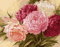 Картина для рисования Королевские пионы (BRM7085) 40 х 50 см