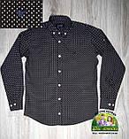 Рубашка Armani черная с белой точкой 7-8 лет, фото 4