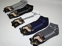 Носки мужские Корона Sports-1806 хлопок (41-47р) код 13063, фото 1
