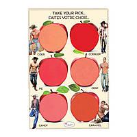 Палетка кремовых румян и помад The Balm How about them Apples