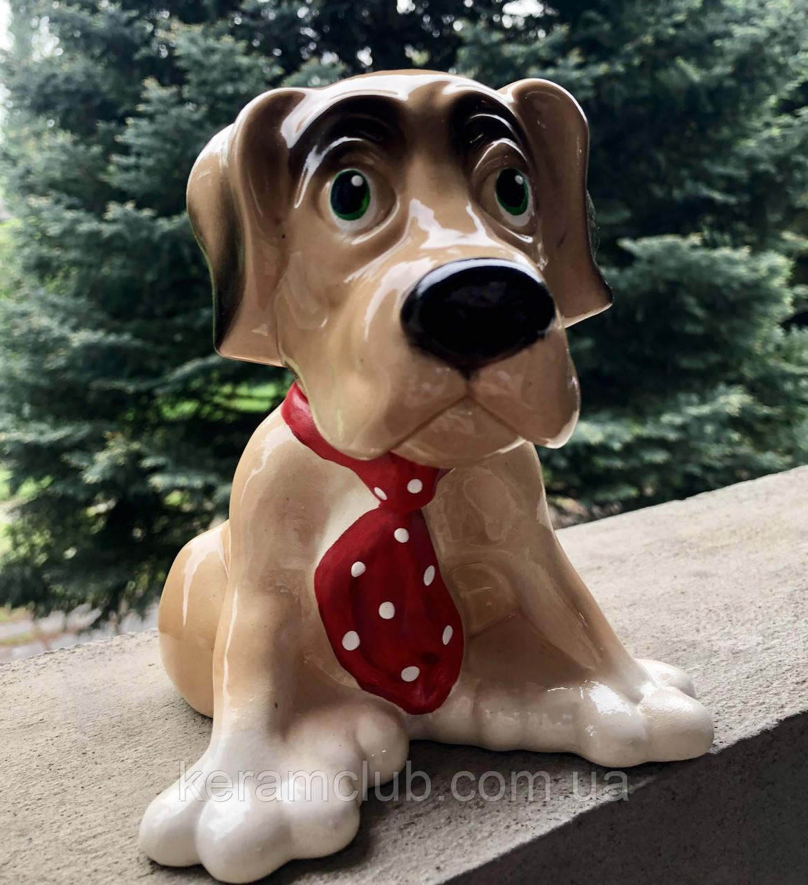 Копилка Собака с галстуком