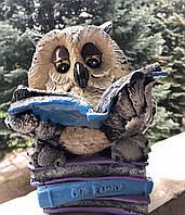 Сувенир Сова с книгой
