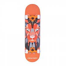 Скейтборд Tempish Lion, фото 3